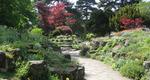 Homepage_east_andrew_park_plants1